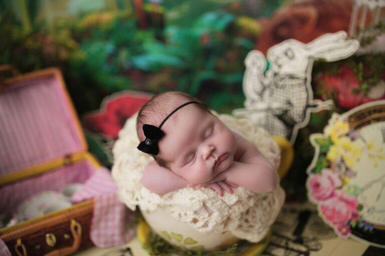 alice in wonder land newborn theme