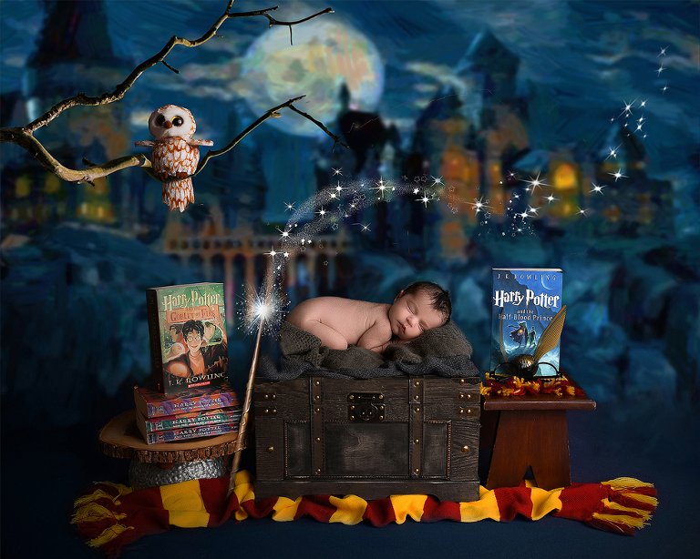 nyc newborn photographer harry potter themes set
