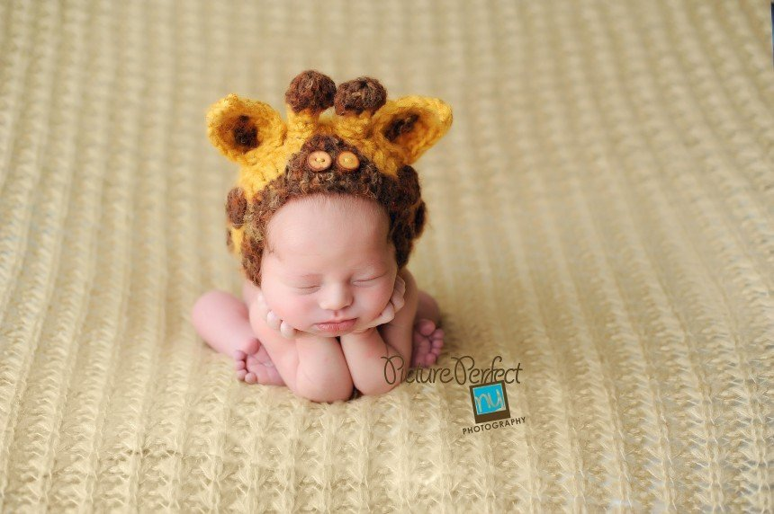 Jax Brooklyn NYC Newborn photographer