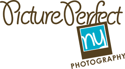 nyc newborn baby photographer picture perfect ny