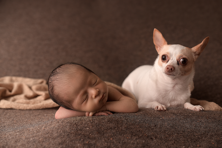 newborn baby with family dog