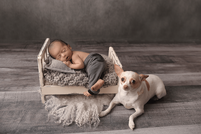 newborn photography nyc, family photography nyc, family photographer near me, newborn photographer near me, newborn photos, family photos